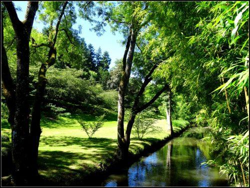 jardin oriental de Maulevrier